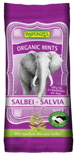 Organic Mints Salbei - Salvia